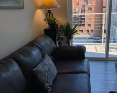 Luxury Riverview Apartment - Henrico County