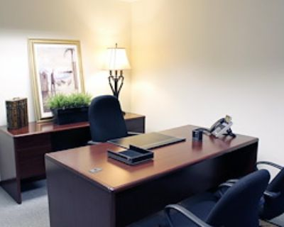 Private Office for 3 at Americenter of Novi