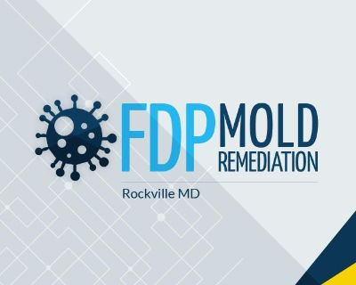 FDP Mold Remediation | Mold Remediation Rockville