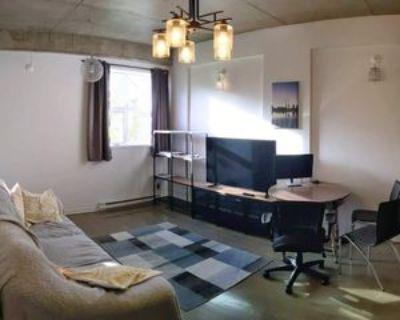 301 Rue mery, Montr al, QC H2X 1J2 1 Bedroom Condo