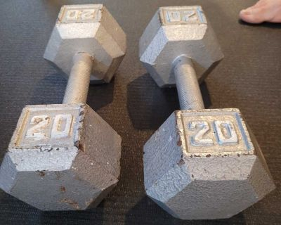 20 lbs dumbbells weights poids alt res