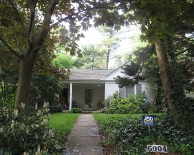 Sunny DC-area summer rental with cat care - Bethesda