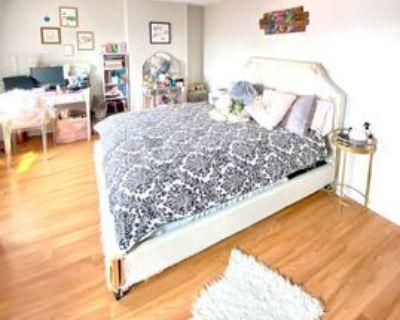 154 Meridian St #4, Boston, MA 02128 1 Bedroom Apartment