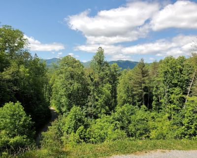 Brand new 2 BR 2 bath Pet friendly cabin to close to all area attractions! - Whittier