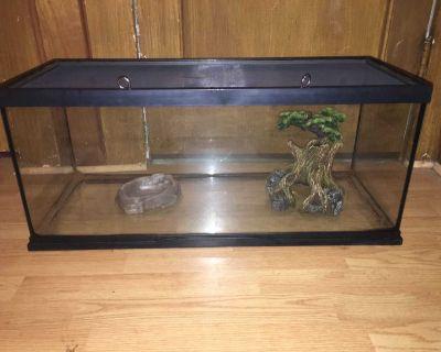 Reptile Tank and Decor