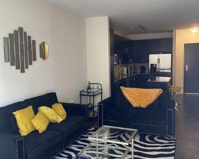 Luxurious Apartment in the Heart of Buckhead - North Buckhead