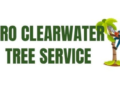 Pro Clearwater Tree Service
