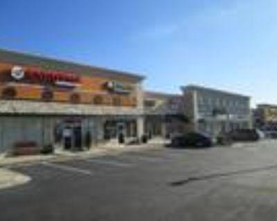 Retail / Peachtree Parkway (141) - Suwanee / Johns Creek / Cumming Area - 1,...