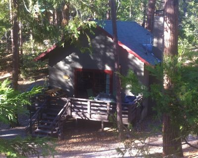 Cozy cabin in the woods - Close to the arts/music & village, Pet friendly, Wifi - Idyllwild