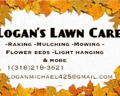 FAll & winter lawn services