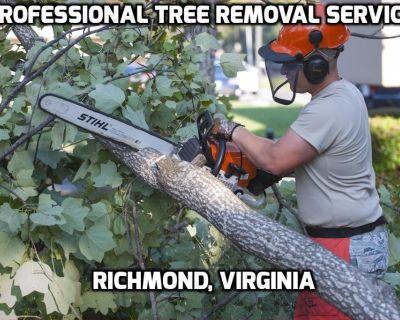 Tree Removal - Richmond, Virginia