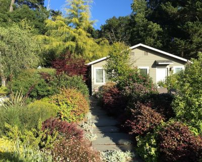 Private Garden Studio w/Separate Office Space, Gorgeous Bay Views, Oakland Hills - Piedmont Pines