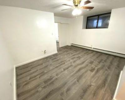198 Allston St #3, Boston, MA 02135 1 Bedroom Apartment