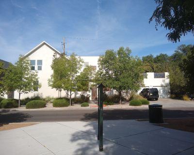 Large modern house in historic downtown Albuquerque - Downtown Albuquerque