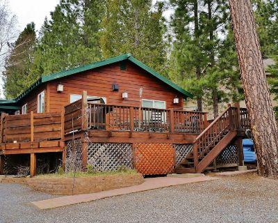 Premiere Family-Friendly Lakeside Cabin, Beautiful Views, Free Dock & Boat Slip - Peninsula Village