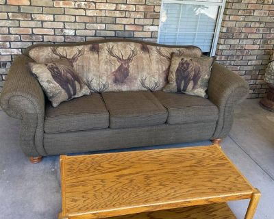 Sofa, pillows and coffee table