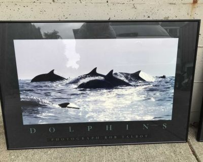 FREE Framed Pictures