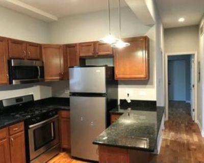 2249 South Bell Avenue #1r, Chicago, IL 60608 2 Bedroom Condo