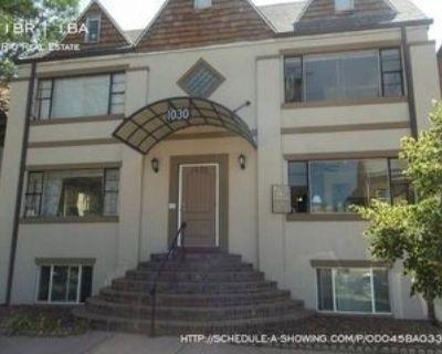 1030 N Washington St #7, Denver, CO 80203 1 Bedroom Apartment