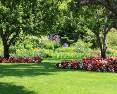 Professional Landscaper in Menlo Park, CA