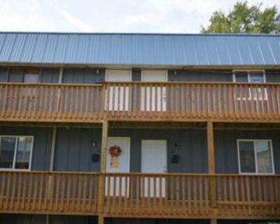 105 N Garth Ave #55, Columbia, MO 65203 1 Bedroom Apartment