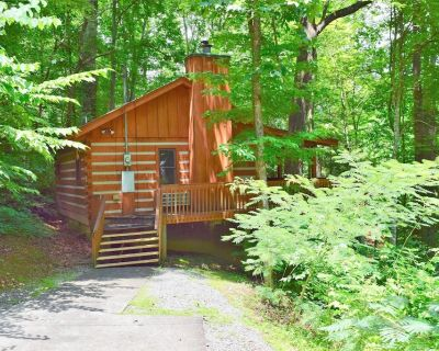 HONEYMOON SWEET!! A cabin for couples.. studio, hot tub, comm pool, firepit, fireplace - Townsend