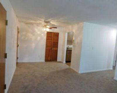 172 Summer St #1, Waltham, MA 02452 1 Bedroom Apartment
