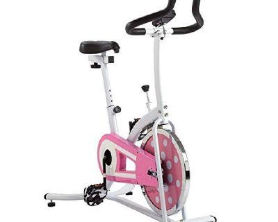 Sunny excercise bike