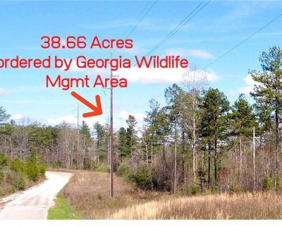 38.66 Acres for Sale in Dawsonville, GA