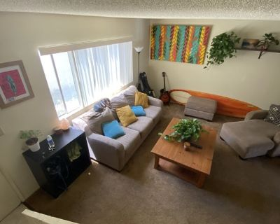 Single Room in 2 bed apartment