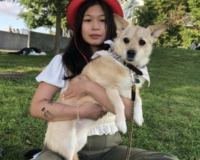 Seeking pet friendly room for sublet
