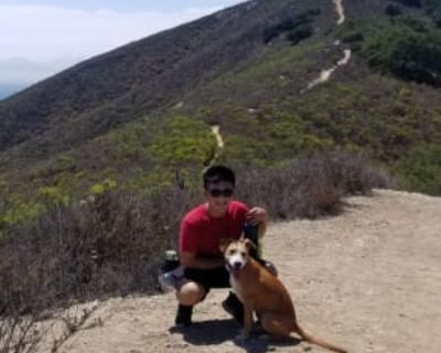 Calvin, 23 years, Male - Looking in: North Hollywood Los Angeles County CA
