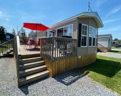 Beautiful Cottage in Vinyards of Niagara on the lake - Niagara-on-the-Lake