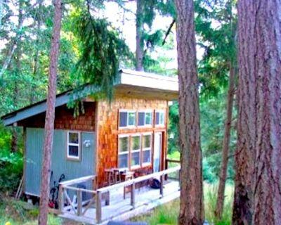 Salt Spring Acreage - 200 ft2 Sleeping Cabin + 400ft2 Studio Cabana across Lake - Salt Spring Island
