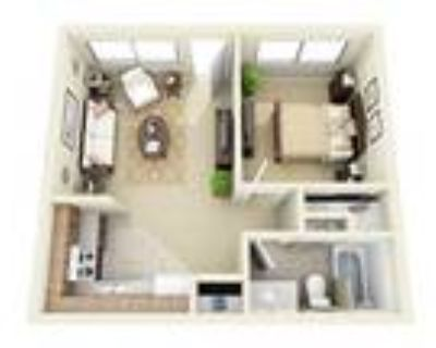 The Vistas Apartment Homes - The Nugget