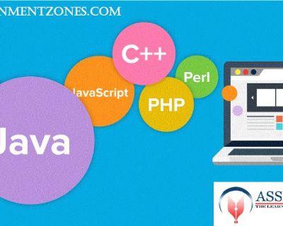 Online Programming Assignment