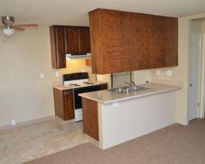 828 W Sacramento Ave #1, Chico, CA 95926 1 Bedroom Apartment