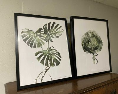 2 plant pictures