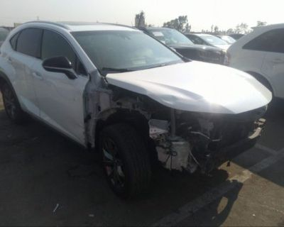 Salvage White 2020 Lexus Nx