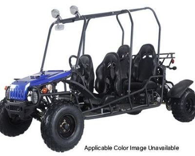2020 Tao Motor 4Fun200 Go Karts Norfolk, VA