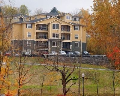 $375! 1 Bd in 2 Bd Apt. May-Aug