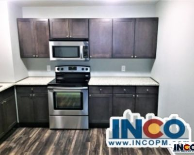 Live in the NEW!! Remodeled 2 bedroom 1 bath with beautiful Views of downtown!