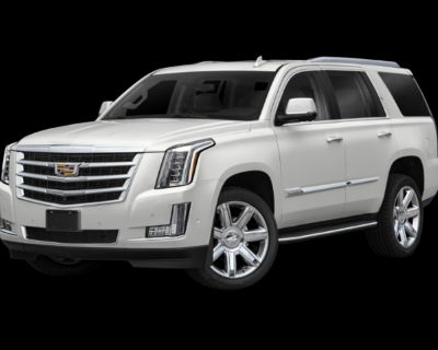 Pre-Owned 2019 Cadillac Escalade Premium 4WD 4D Sport Utility