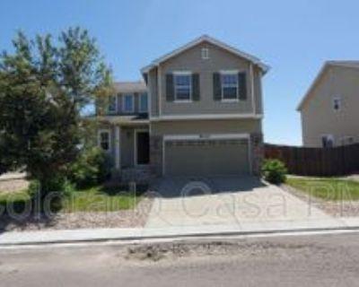 14165 Blue Canyon Grv, Colorado Springs, CO 80921 4 Bedroom Apartment