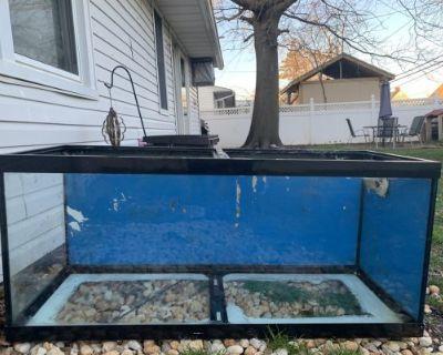 75 gallon tank for sale