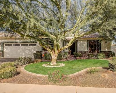 Vacation home for rent in Gilbert Arizona.