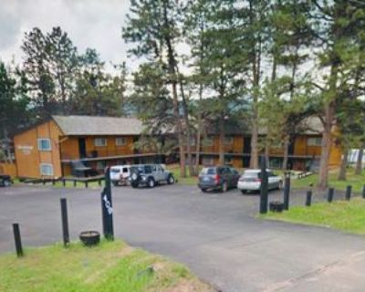 409 409 E Sheridan Ave - 204, Woodland Park, CO 80863 1 Bedroom Condo