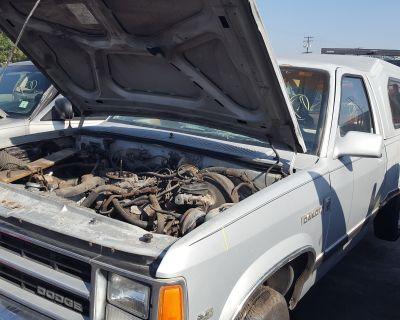 1988 Dodge Dakota