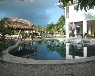 Swim in your own heated custom lagoon pool all winter. Resort like custom home - Cudjoe Key