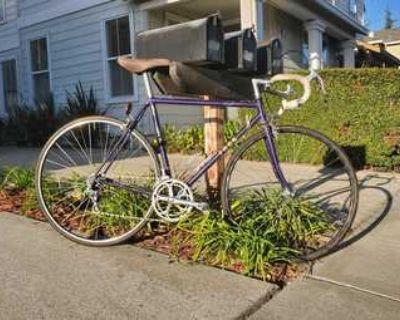 Vintage Trek road bike
